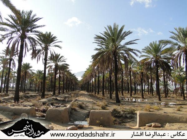 http://roydad.persiangig.com/rooydadshahr/rooydadshahr8.jpg